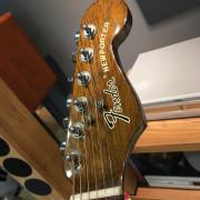 Fender Newporter