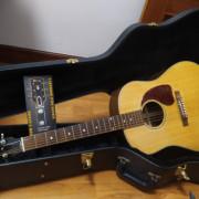 Gibson J15 reservada
