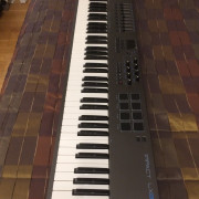 Teclado Nektar LX88+ mas pedal Nektar NP-2