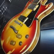 Les Paul ARIRANG (Luthier)