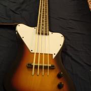 Savannah U Bass Thunderbird