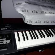 Roland A88