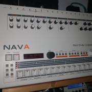 Nava (clon 909)