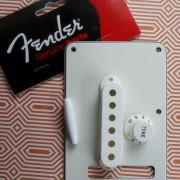 Mercadillo Fender made in USA. Plasticos y tornillos puente
