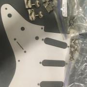 Despiece Fender Stratocaster Roadworn