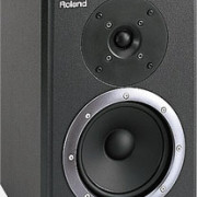 Monitor activo Roland DS90A