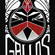 GALLOS busca guitarrista!