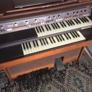 Vendo órgano   Milton Countach 310