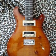 Guitarra PRS Custom SE 24/7 cuerdas