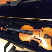 viola g.klaus