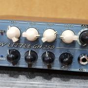DV Mark DV Little GH 250 Greg Howe