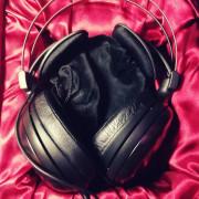 Audio-Technica ATH-W5000 Raffinato