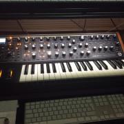 Moog Sub 37 (no cambios)