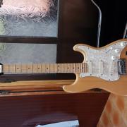 Fender stratocaster USA EMG DG-20 Gilmour
