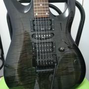 Proyecto de Guitarra Cort