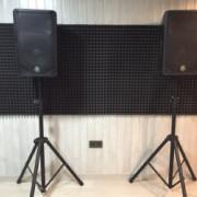 Altavoces Yamaha DBR-12