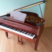 Piano Colín Zimmermann