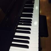 PIANO CASIO CDP 130