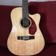 Fender 12 cuerdas + Pre Fishman