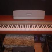 Piano korg concert EC150