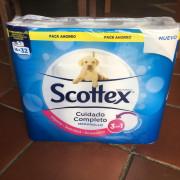 RESERVADOS: Scottex 16 rollos