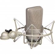 Micrófono Neumann TLM 103 + soporte Neumann EA 1