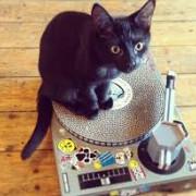 Clases DJ Scratch curso
