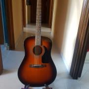 Guitarra Acústica Fender CD-60 Sunsburt
