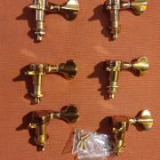 Clavijeros Gold 6L