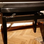 Piano PX-110+ asiento regulable