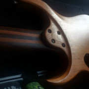 Guitarra Siggery Heresy FF8 Custom