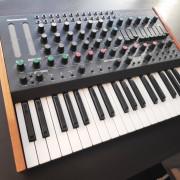 Teclado Sintetizador analogico MFB Dominion 1