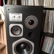 Altavoces Marantz HD550