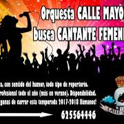 Orquesta de Zaragoza busca cantante femenina