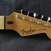 Mástil Stratocaster TMG / All Parts / Göldo / HOSCO