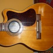 Gibson Chet Atkins, Nylon Strings, 1982