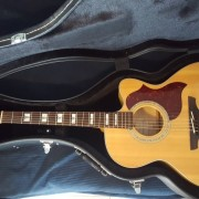 Acústica Takamine EG523SC