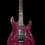 ESP LTD MH-301