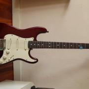 Stratocaster Plus 89-90