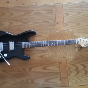 Stratocaster inusual