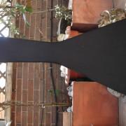 Guitarra Zurda Schecter V1