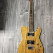 Fender Custom tele Fmt HH