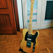 Fender American Ash Telecaster (8502)