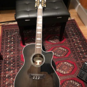 D´Angelico Excel Fulton GB 12-String-dangelico-