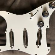 Golpeador complete stratocaster