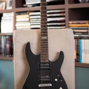LTD ESP M-10
