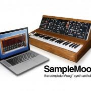 Vendo o cambio IK Multimedia Samplemoog - Sintetizador ROMpler