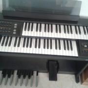 Órgano/teclado electrónico Orla N410