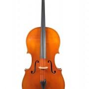 Cello Dynasty 3/4