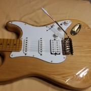 Stratocaster custom (No Fender)